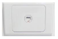 Network wall socket